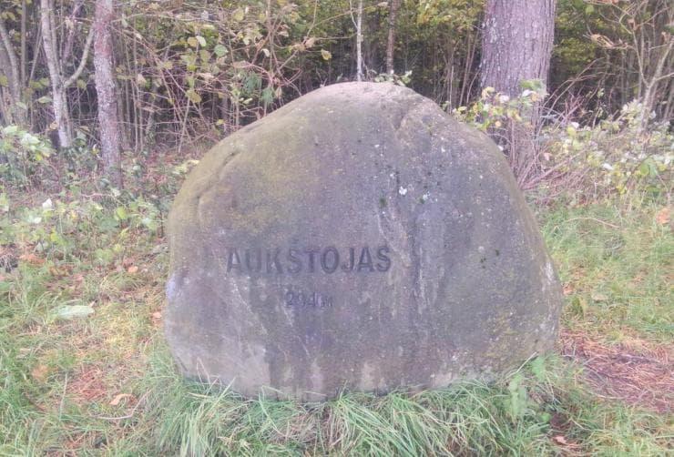 Paminklinis akmuo Aukštojo kalno viršūnėje 294 m.
